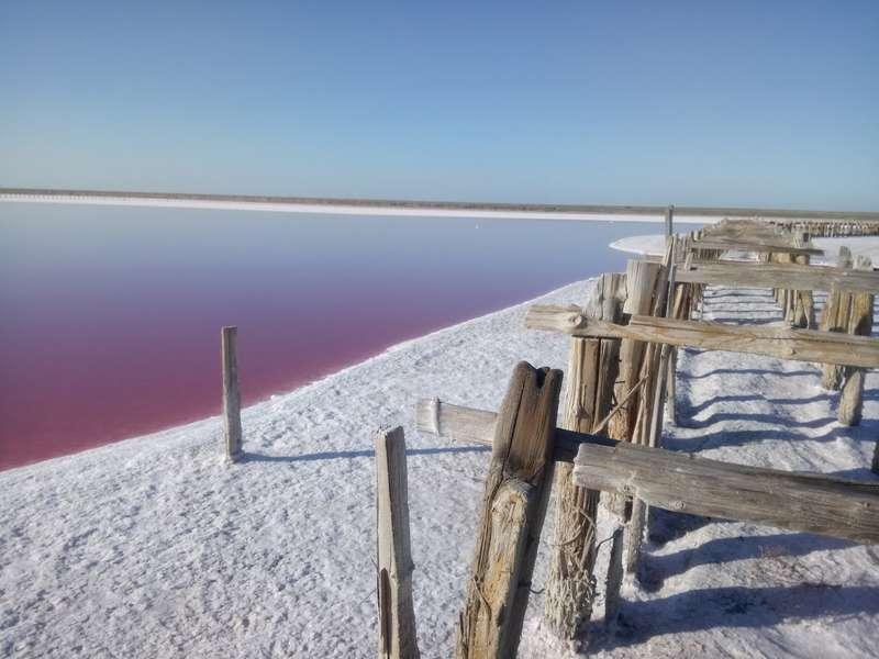 Розовое озеро Сиваш на Арабатской Стрелке