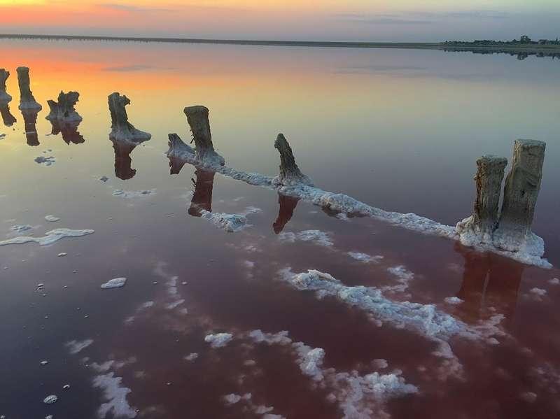 Розовое озеро на Арабатской Стрелке